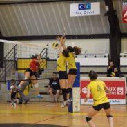 La section Volley recherche des joueurs
